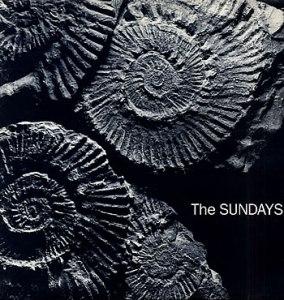 Sundays-Reading-Writing--10865